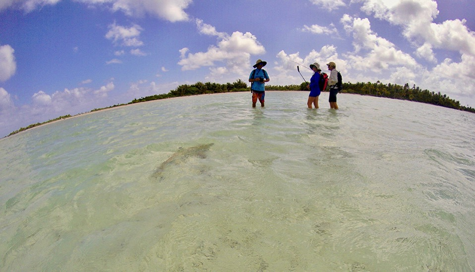 RS Ellen and Rand and the sharks hang out with Marcus to witness the art of flyfishing to bonefish